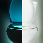 Illumibowl Germ Defense // Set of 2