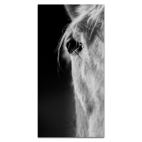 Horse 1 Eye // White