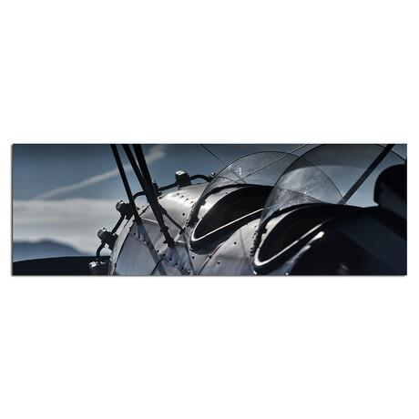 "Cockpits // Horizontal  (48""W x 16""H x 0.5""D )"