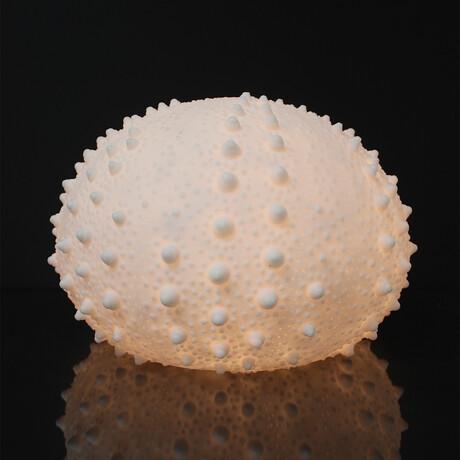 Cast Resin Sea Urchin Lamp // Small