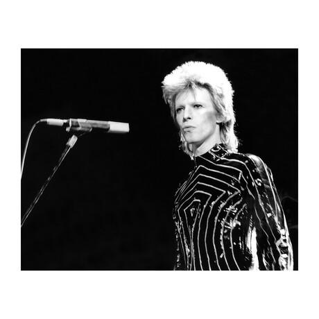 """Ziggy Stardust Era Bowie In LA (16""""W x 20""""H)"""