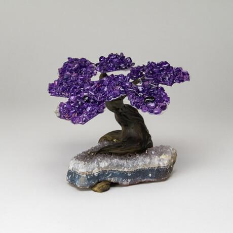 The Relaxation Tree // Amethyst Clustered Gemstone Tree on White Quartz Matrix // Medium
