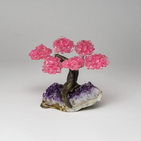 The Love Tree // Rose Quartz Clustered Gemstone Tree on Amethyst Matrix // Small