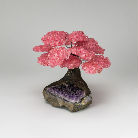 The Love Tree // Rose Quartz Clustered Gemstone Tree on Amethyst Matrix // Large
