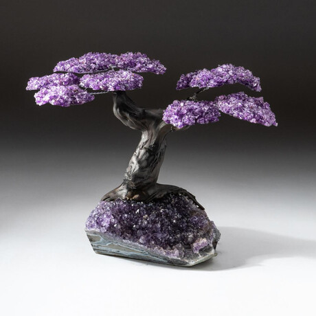 The Protection Tree // Custom Amethyst Clustered Gemstone Tree on Amethyst Matrix // V1