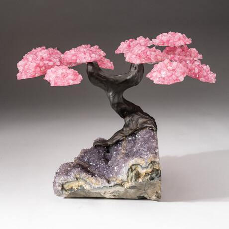 The Love Tree // Custom Rose Quartz Clustered Gemstone Tree on Amethyst Matrix // V2