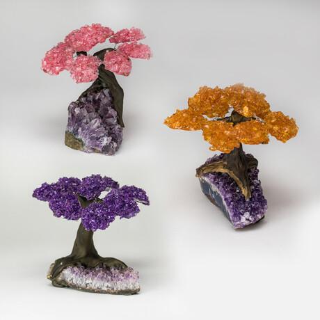 Gemstone Trees on Amethyst Matrix // Set of 3 // Rose Quartz + Citrine + Amethyst // Medium