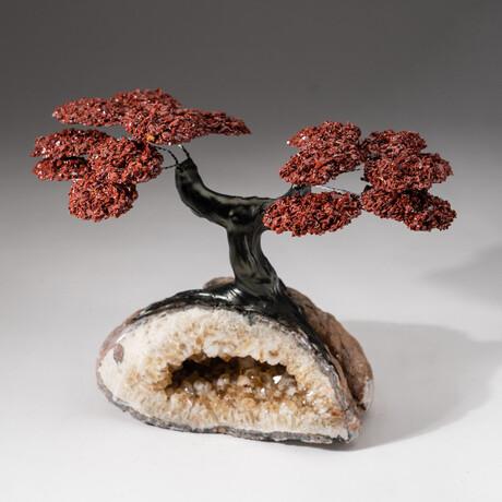 The Safety Tree // Custom Red Jasper Clustered GemstoneTreeon Citrine Crystal Cluster