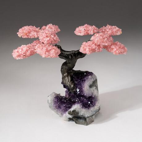 The Love Tree // Custom Rose Quartz Clustered Gemstone Tree on Amethyst Matrix // V1