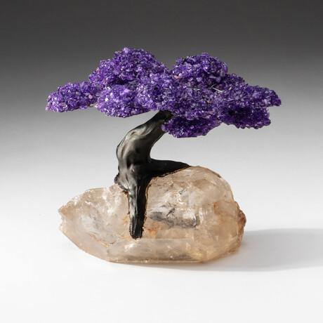 The Harmony Tree // Amethyst Clustered Gemstone Tree on Extra Large Clear Quartz Crystal Matrix