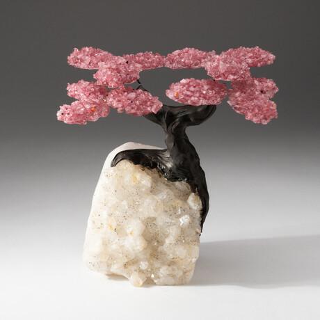 The Wellness Tree // Custom Rose Quartz Clustered Gemstone Tree on White Quartz Matrix