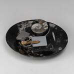 Genuine Polished Round Orthoceras Fossil Dish