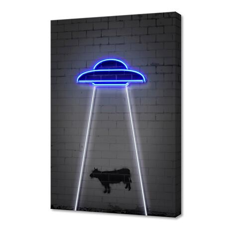 """UFO (16""""W x 24""""H x 1.5""""D)"""