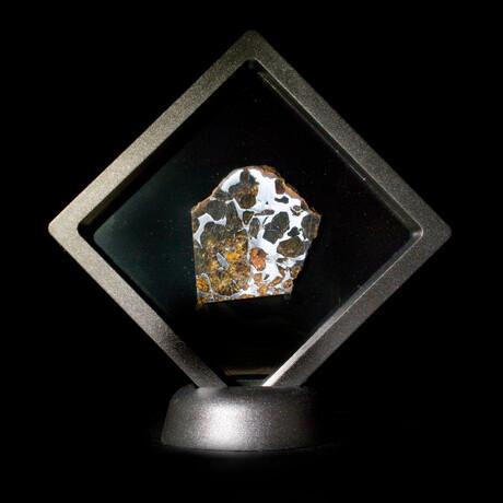 Imilac Pallasite Meteorite // Exterior Part Slice