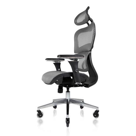 Nouhaus Ergo3D Ergonomic Office Chair // Silver Gray
