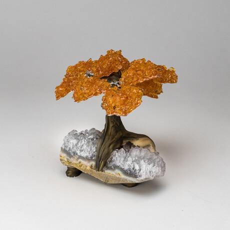The Prosperity Tree // Genuine Medium Citrine Clustered Gemstone Tree on White Quartz Matrix // V1