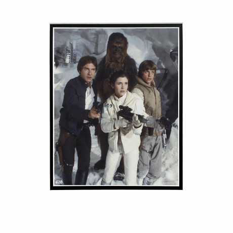 Han Solo, Chewbacca, Princess Leia, Luke Skywalker // Licensed Star Wars Photo (Unframed)