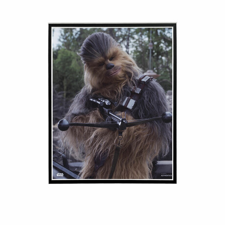 Chewbacca Head Tilt // Licensed Star Wars Photo (Unframed)