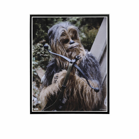 Chewbacca & Bowcaster // Licensed Star Wars Photo (Unframed)