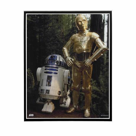 R2-D2 & C3P0 // Licensed Star Wars Photo (Unframed)