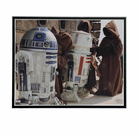 R2-D2 & R5-D4 // Licensed Star Wars Photo (Unframed)