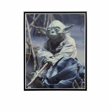 Yoda Holding Stick // Licensed Star Wars Photo (Unframed)