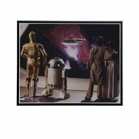 C-3PO, R2-D2, Princess Leia, Luke Skywalker // Licensed Star Wars Photo (Unframed)