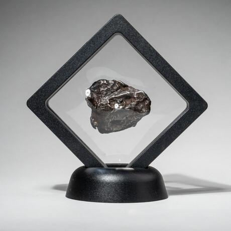 Genuine Natural Sikhote-Alin Meteorite + Display Box // 35 g