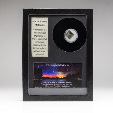 Genuine Muonionalusta Meteorite + Display Box