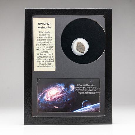 Genuine NWA 869 Meteorite + Display Box