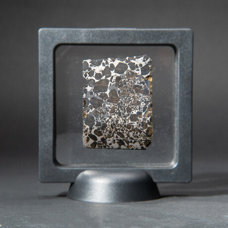 Genuine Seymchan Pallasite Meteorite Slice + Acrylic Display Stand // 22 g