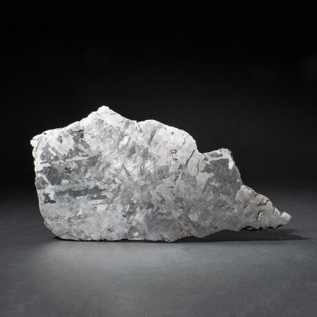 Genuine Natural Large Campo del Cielo Meteorite Slice // 481.7 g