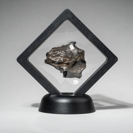 Genuine Natural Sikhote-Alin Meteorite + Display Box // V2 // 46 g