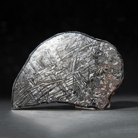 Large Genuine Seymchan Meteorite Slice + Acrylic Display Stand // 205 g