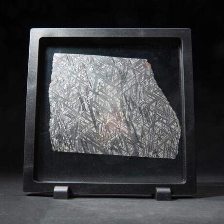 Large Genuine Seymchan Meteorite Slice + Acrylic Display Stand // 371 g