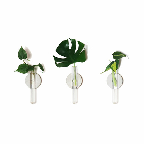 The Magnetic Propagation Set // Deluxe (Set of 9)