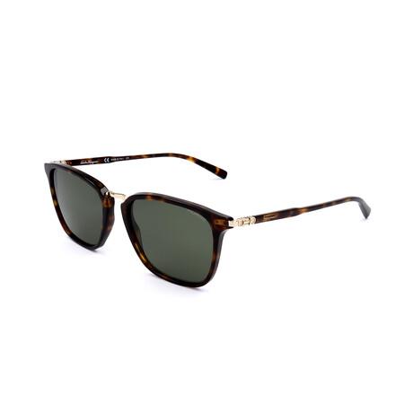 Men's SF910SP Polarized Sunglasses // Tortoise