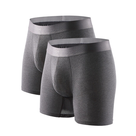 Technical Silver + Odor Resistant Boxer Briefs // Gray // Pack of 2 (S)
