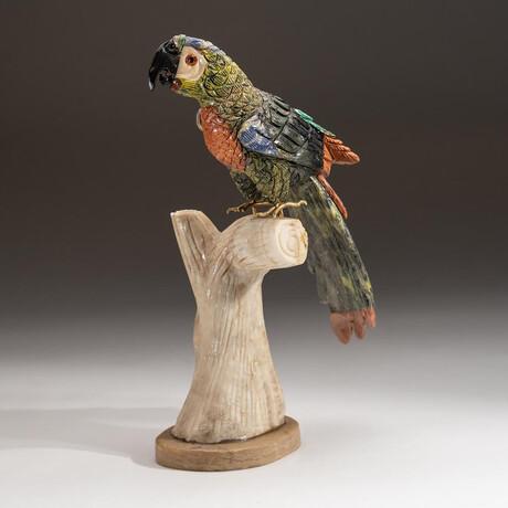 Genuine Polished Hand Carved Parrot + Custom Stand // V1