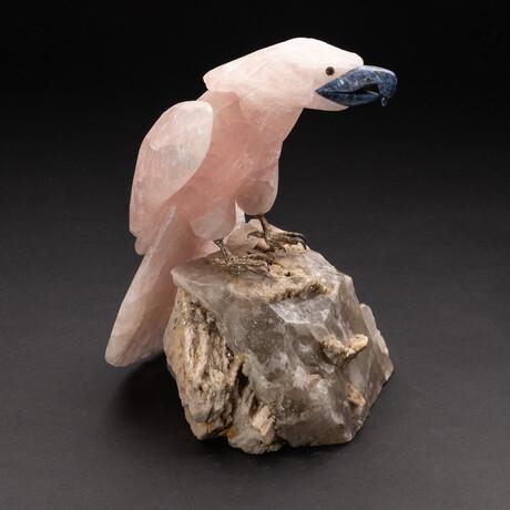 Genuine Polished Hand Carved Rose Quartz Parrot on Smokey Quartz Matrix