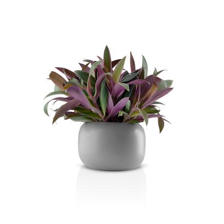 "Stone Flower Pot (6.3"")"
