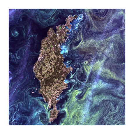 """Van Gogh From Space (36""""H x 36""""W x 0.2""""D)"""