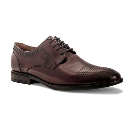 Jackson II Shoes // Antique Burgundy (US: 8)