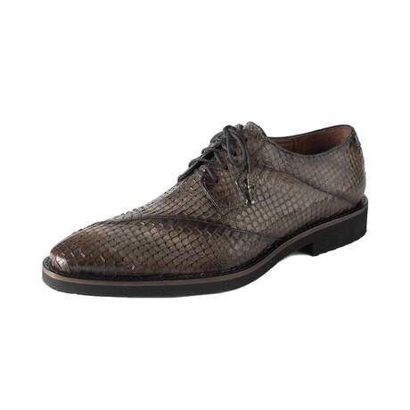 Tony Shoes // Antique Brown (US: 8)