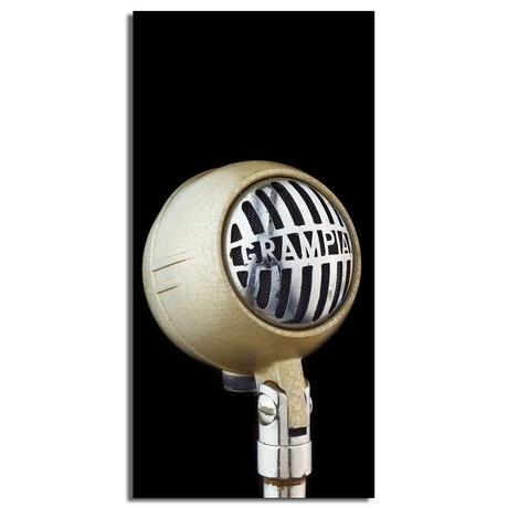 "White Round Microphone (16""W x 48""H x 0.5""D)"