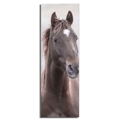 """Brown Horse 2 (16""""W x 48""""H x 0.5""""D)"""