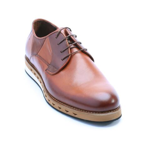 Marco Dress Shoe // Tobacco (Euro: 39)