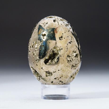 Genuine Polished Pyrite Egg + Acrylic Display Stand