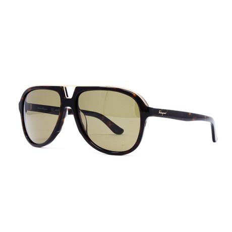 Men's SF730S Sunglasses // Tortoise