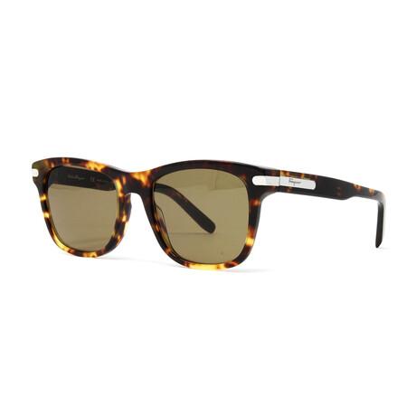 Men's SF936S Sunglasses // Dark Tortoise